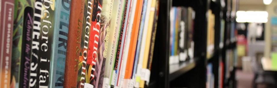 Closeup of a full bookshelf at the CCB